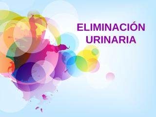 ELIMINACIÓN URINARIA (copia) - copia.ppt