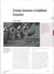 06. strategic innovation in established companies.pdf